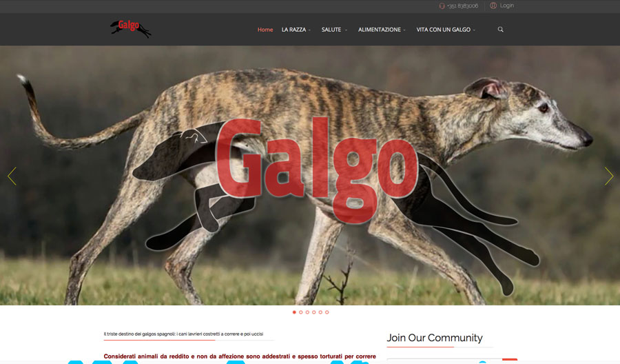 GALGOS.IT